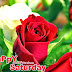 Happy Saturday Images | Free Download Happy Saturday 2015 Images