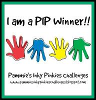 Winner PIP Challenge 1902