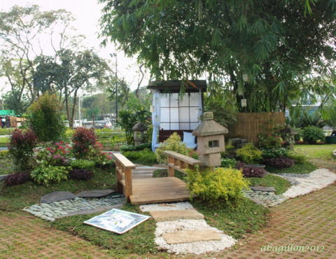 Andrea 39 s plants photos and travels philippine orchid for Garden designs philippines