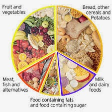 food nutrition chart,healthy living,protein rich foods