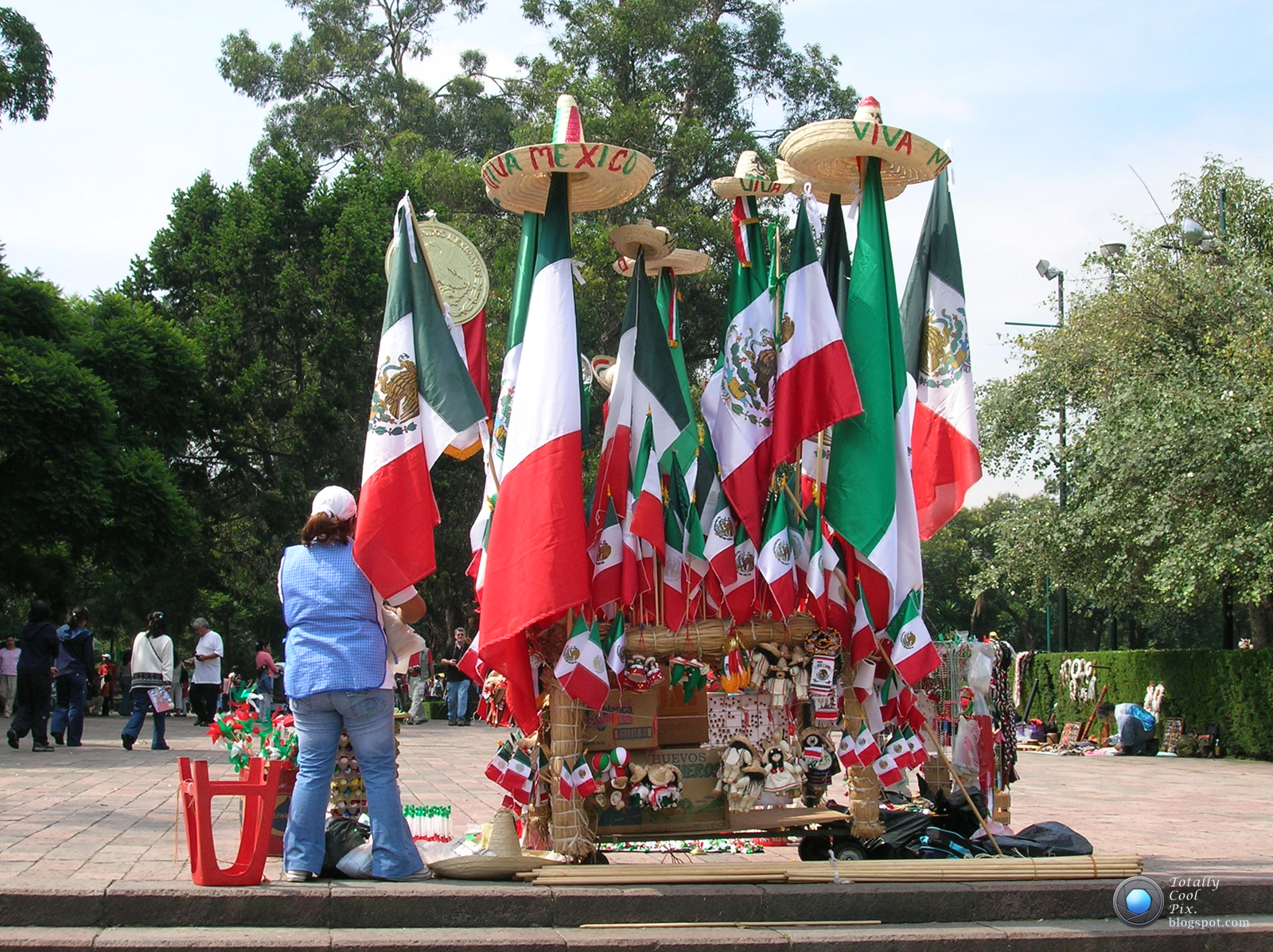 mexican independence In this lesson, students will study four popular mexican holidays and examine images to see how these particular celebrations represent mexico's colorful history.