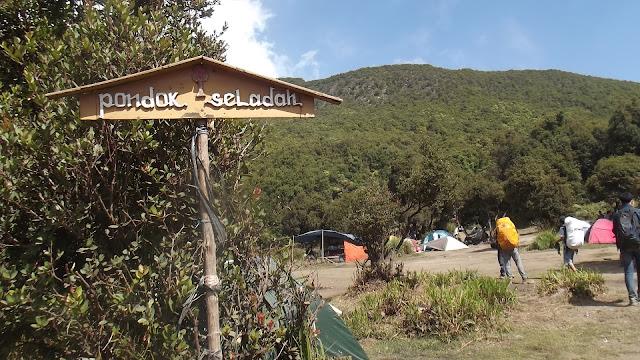 Pondok Saladah Gunung Papandayan