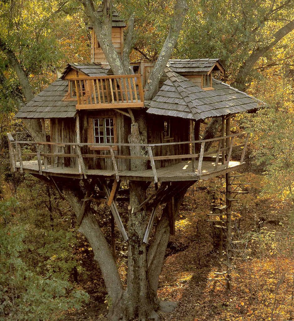 Fauna decorativa: Casa en un árbol / Tree house