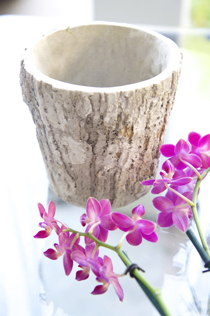 Faux Bois planter; How to Landscape an Orchid; Nora's Nest