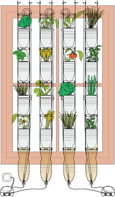 Windowfarms un huerto en tu ventana - Cultivar judias verdes ...