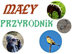 http://www.kreatywnymokiem.pl/2015/07/may-przyrodnik-poczuj-przyrode.html