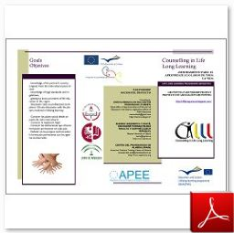 Spanish CiLLL leaflet (english & spanish)