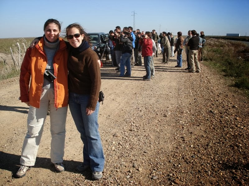 XI Recibimiento a los Ánsares. Organiza SEO-Sevilla. Excursión Doñana