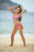 Amy Jackson Hot Photos from Yevadu-thumbnail-13