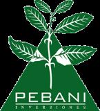 PEBANI INVERSIONES