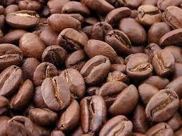 أغلى نوع قهوة فى العالم مصنوعة من....روث الفيل !!!!!