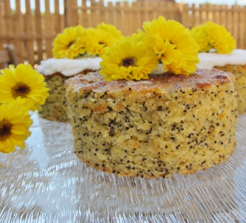 Gluten Free Orange Poppyseed Cake