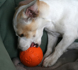 Trying to remove the squeaking thing from the ball