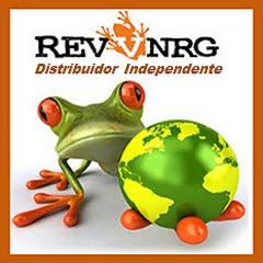 RevvNRG, A ENERGIA PURA DA FLORESTA TROPICAL BRASILEIRA!