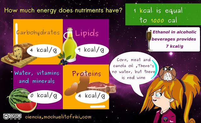 energy nutriments mnemonics