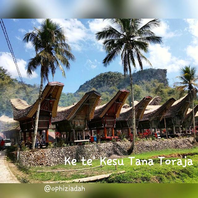 travelling, tana toraja trip, indonesia