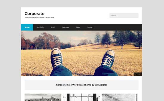 corporate theme