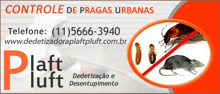 Controle de Pragas Urbanas em São Paulo 24 Horas