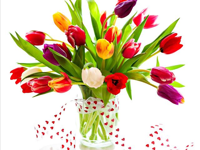 Hình ảnh hoa đẹp 08