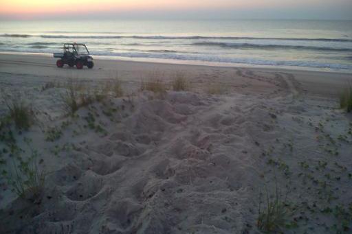 sitting on the beach essay