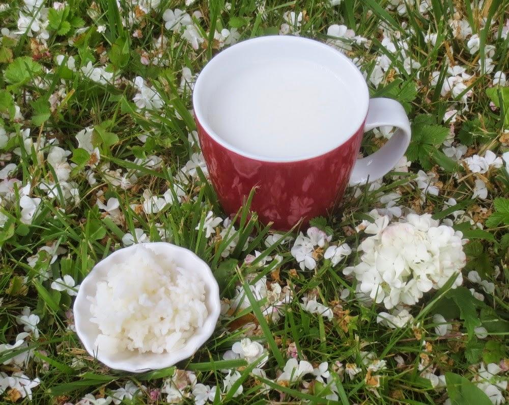 Reismilch (Reisdrink aus Basmati-Reis)