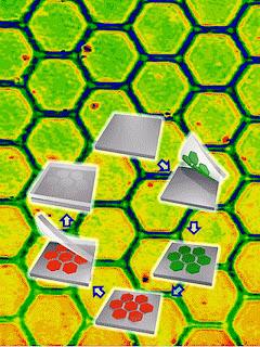 nanoglue