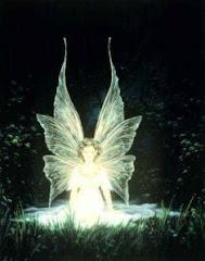 """""""Dăruind lumina pe care nu o ai, o vei dobândi şi tu"""" (N. Steinhardt – Dăruind vei dobândi)"""