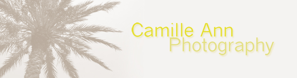 Camille Ann Photography