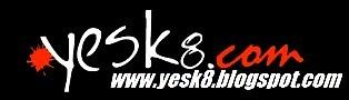 Yesk8 Blog