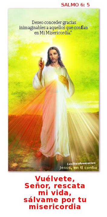 divina misericordia con salmo 6-5