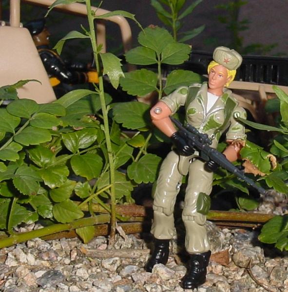 2005 Daina, Oktober Guard, Comic Pack, Horrorshow, HAS Roadblock, 1991 Stalker, 2001 Desert Striker