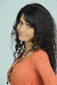 Ritu Sachdev latest glam pics-thumbnail-17