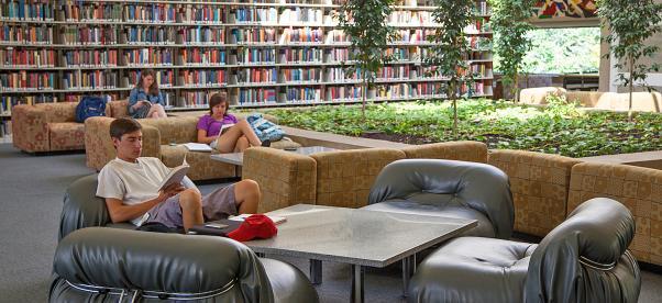 perpustakaan yang tenang