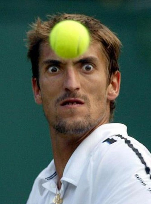Wall Photos, funny and fun: Sports Funny Faces