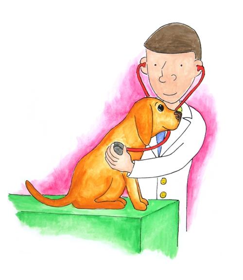 Visit Dr. Chuck!