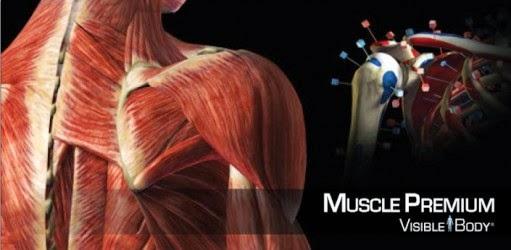 Fisioterapia: 10 #Apps que todo Fisio debe Tener ! #Smartphone ...