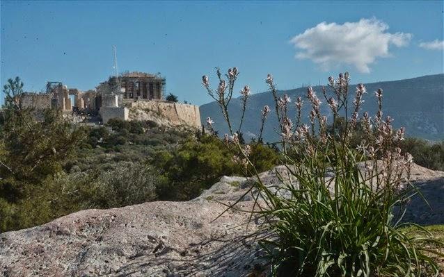 Ξενάγηση - αναδρομή στο αρχαίο «βήμα» της Πνύκας