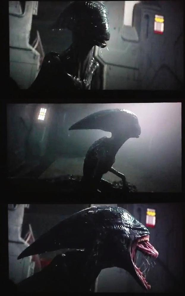 Xenomorph Prometheus Xenomorph Prometheus A...