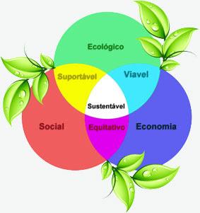 Paradigma Social