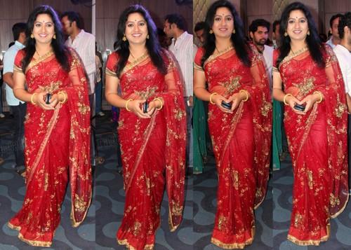 Sana Transparent Net Saree