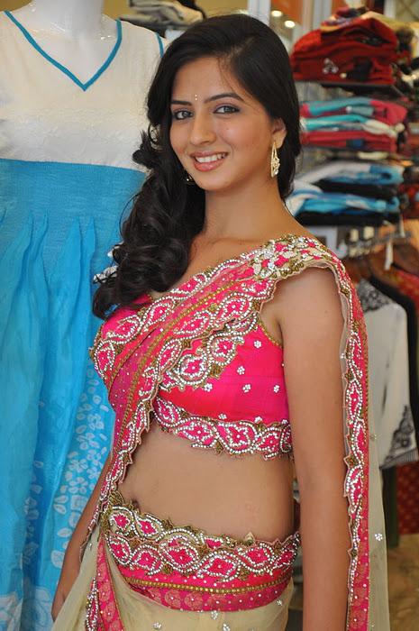 South New Desi Actress Nisha Shah Latest Cute Saree Photos hot images