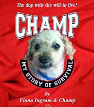 Champ: My Story of Survival