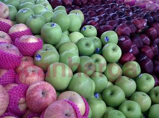 Harga Buah Apel Import dan Lokal Bulan Ini