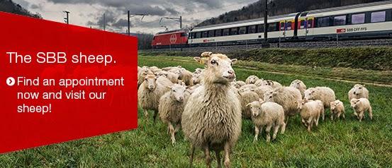 http://www.sbb.ch/en/group/the-company/der-umwelt-verpflichtet/the-sbb-sheep.html