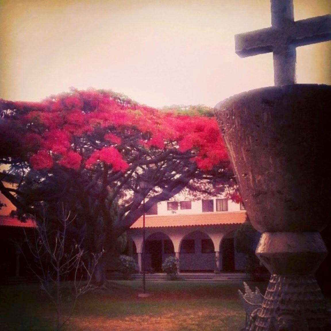 El Nacimiento del Seminario Menor