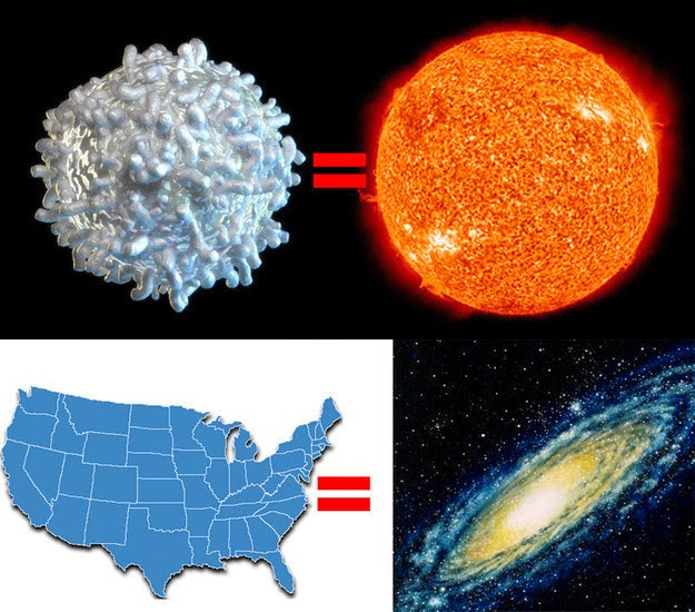 26 Pictures Will Make You Re-Evaluate Your Entire Existence - BUT NONE OF THOSE COMPARES TO THE SIZE OF A GALAXY. IN FACT, IF YOU SHRUNK THE SUN DOWN TO THE SIZE OF A WHITE BLOOD CELL AND SHRUNK THE MILKY WAY GALAXY DOWN USING THE SAME SCALE, THE MILKY WAY WO