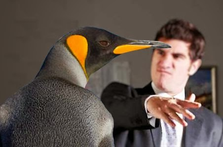 Slap The Penguin