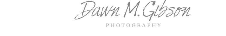 Dawn M. Gibson Photography