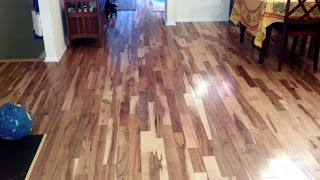 rustic tavern grade birch plank natural hardwood