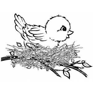 Simple Bird Free Animal Coloring Sheet For Kids